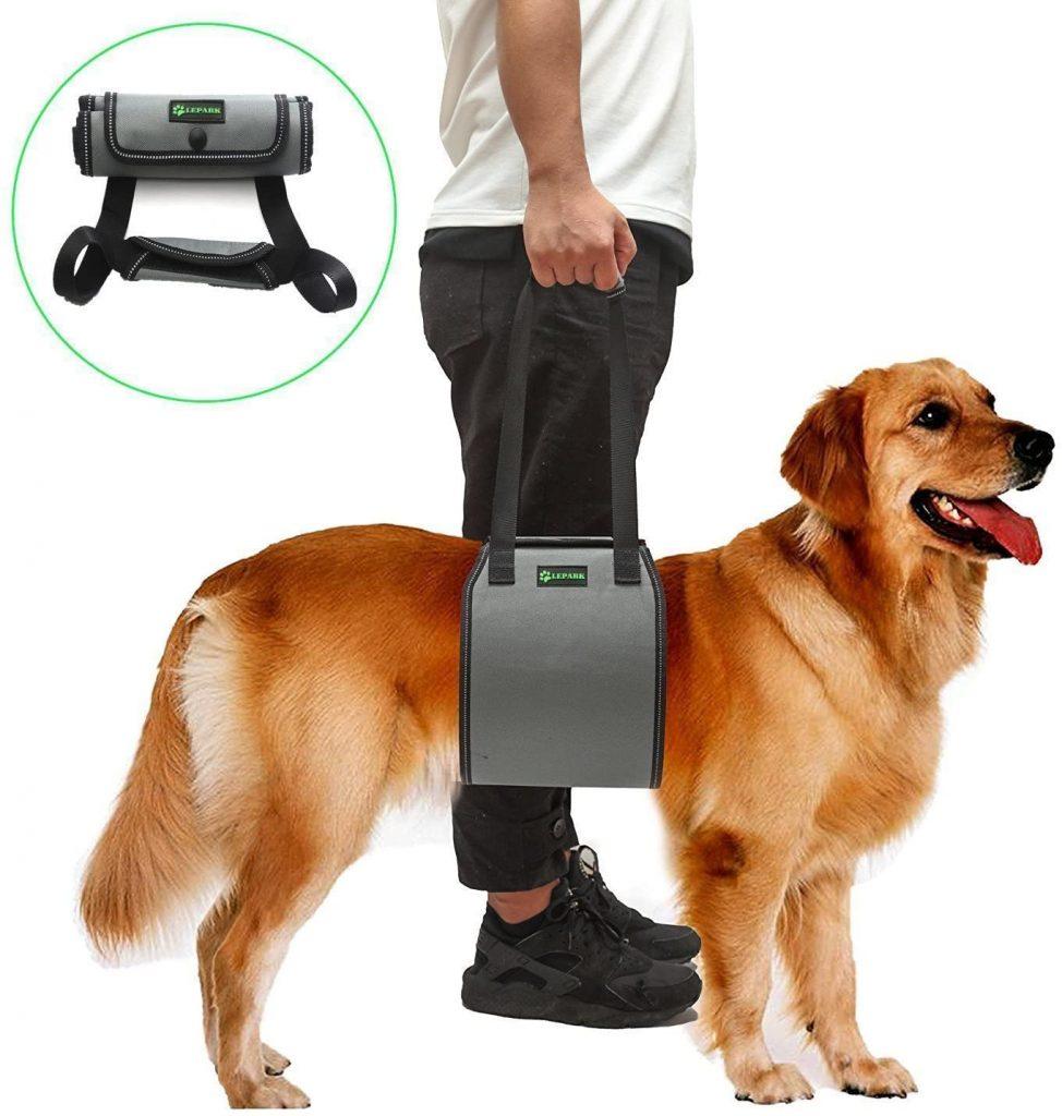 RockPet Soporte para Perros con Manija para la Ayuda Canina, Aprobado por los Veterinarios. Arnés para Levantar Perros Durante la Rehabilitación (S,Gris)