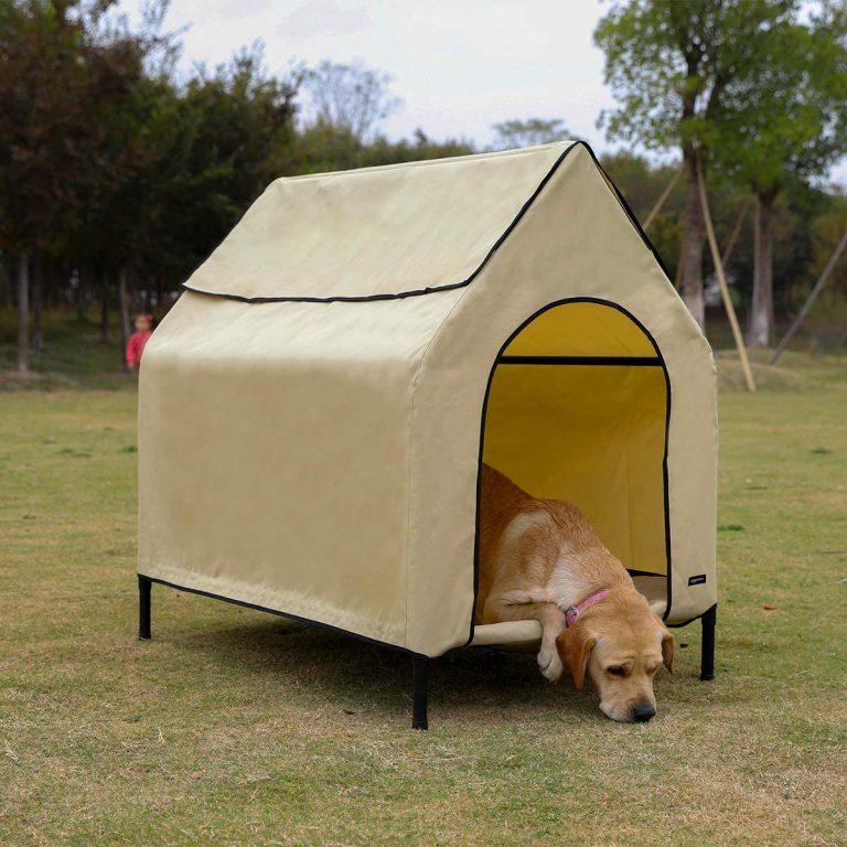Amazon Basics - Caseta para mascotas, elevada, portátil, mediana, caqui