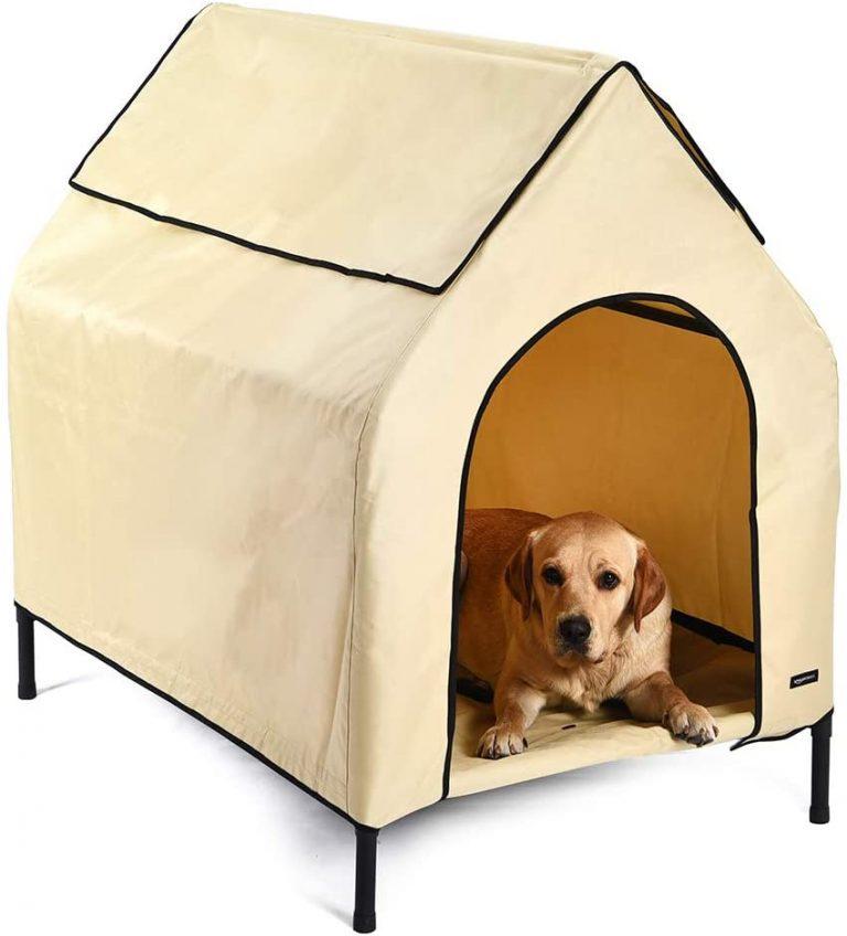 Amazon Basics - Caseta para mascotas, elevada, portátil, mediana, caqui 4