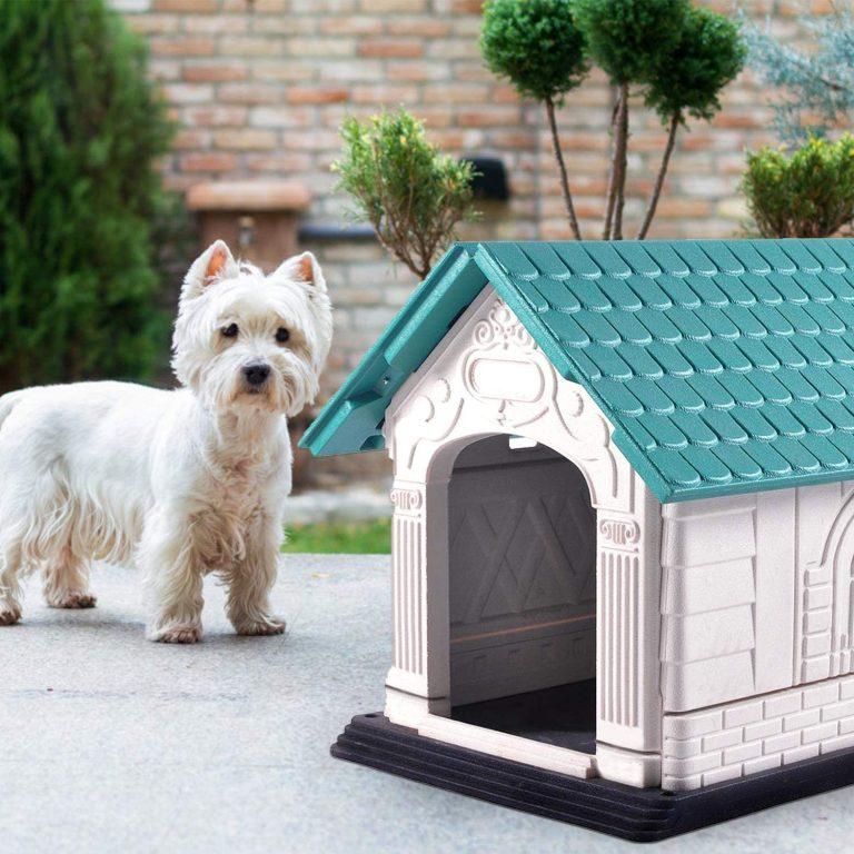Nobleza - Caseta para Perros de Polipropileno Impermeable con tejado a Dos Aguas para Interior y Exterior. Blanco y Verde 72x57x57.6cm2